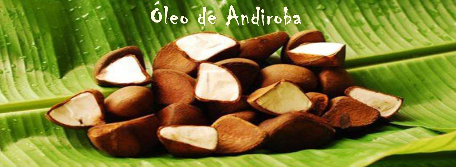 ÓLEO DE ANDIROBA
